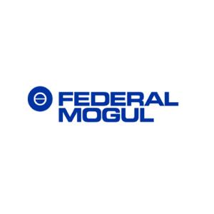 wycena wartości firmy Federal Mogul