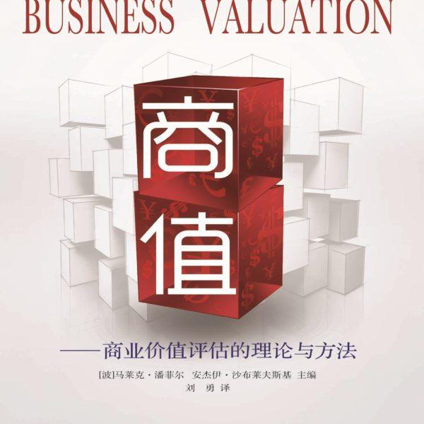 Wyceny przedsiębiorstw Business Valuation (商值——商业价值评估的理论与方法 )
